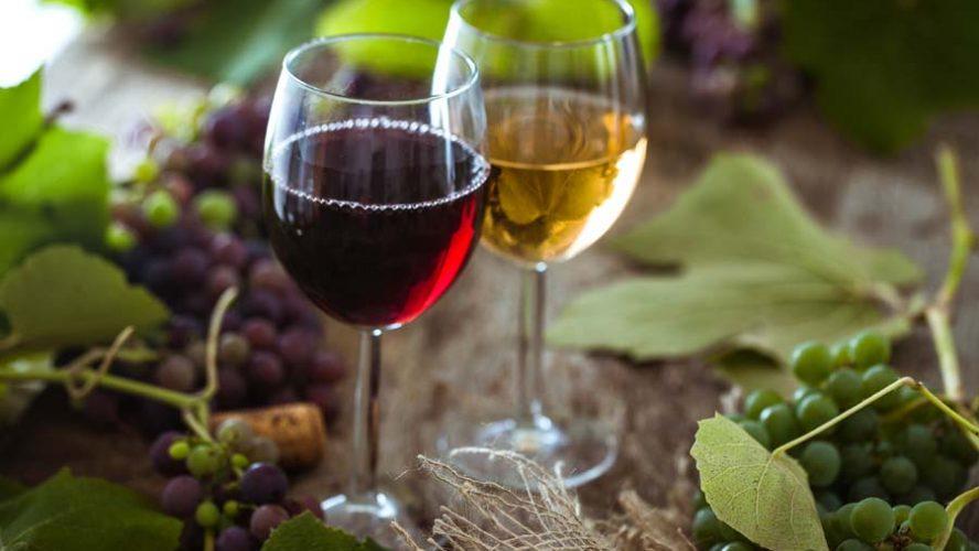 Vini naturali: le caratteristiche e dove puoi acquistarli