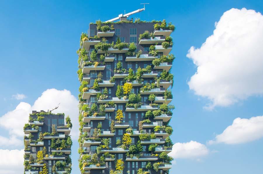 Realizza un giardino verticali in casa: ecco a chi puoi rivolgerti