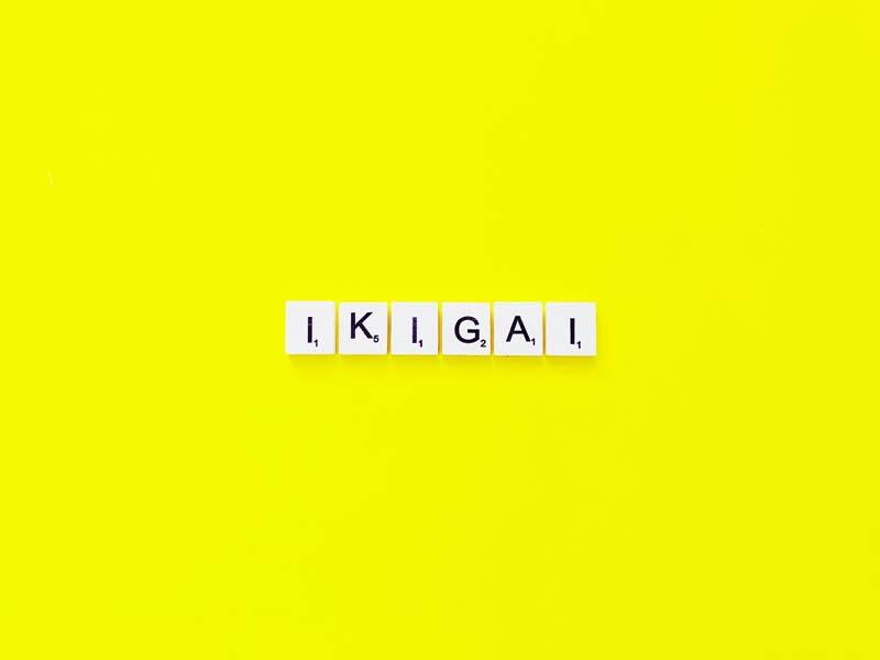 Qual è il significato della parola Ikigai?